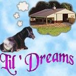 Lil Dreams
